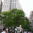 New_york_pix0031